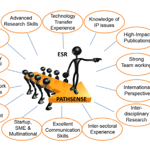 pathsense training programme