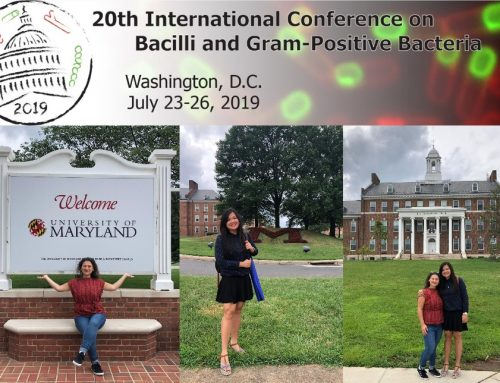 PATHSENSE ESRs at the 20th International Conference on Bacilli and Gram-Positive Bacteria in Washington DC on July 23-26 2019